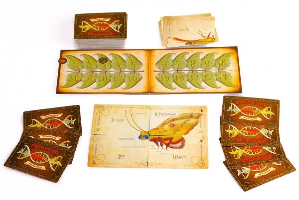 """Аукцион силы - настольная игра """"Весёлая генетика: насекомые"""" (Фото 2)"""