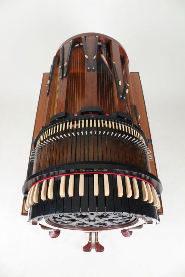 Wheelharp или колесная арфа (Фото 3)