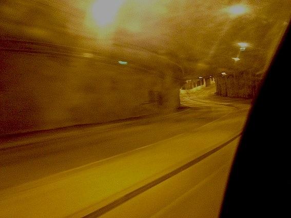 Очередной унцик,назвали Феликсом,Хельсинки. (Фото 9)