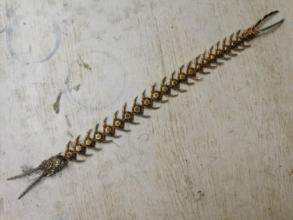 Сколопендра это не только 42 ноги.... (Фото 16)
