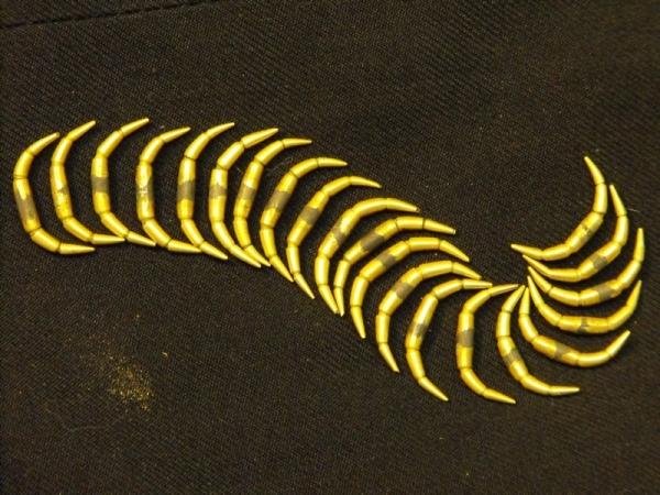 Сколопендра это не только 42 ноги.... (Фото 8)
