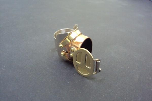 Кольцо интритрига. (Фото 10)