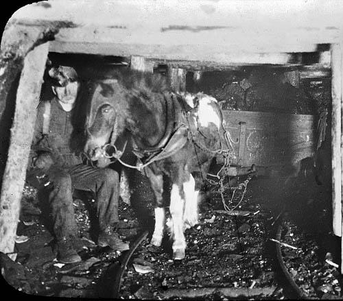 Уголь - исторический экскурс (Фото 4)
