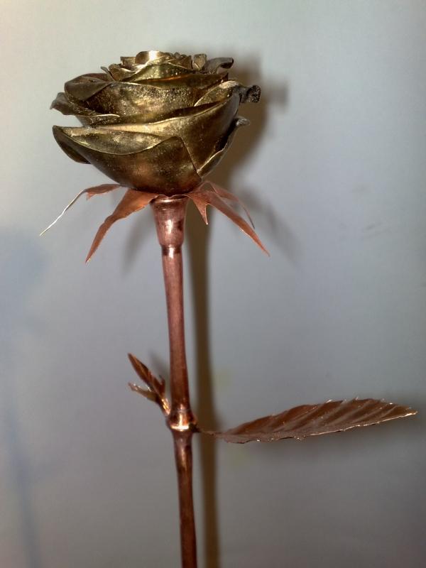 Стим цветок. (Фото 9)