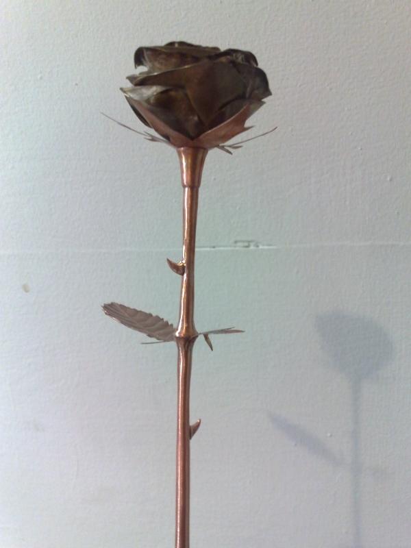 Стим цветок. (Фото 14)