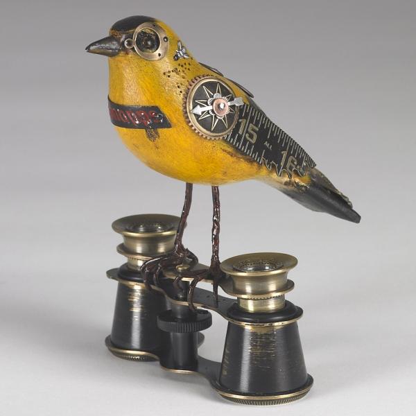 Джим Мулланни (Jim Mullani) и его птицы ... и не только . (Фото 4)