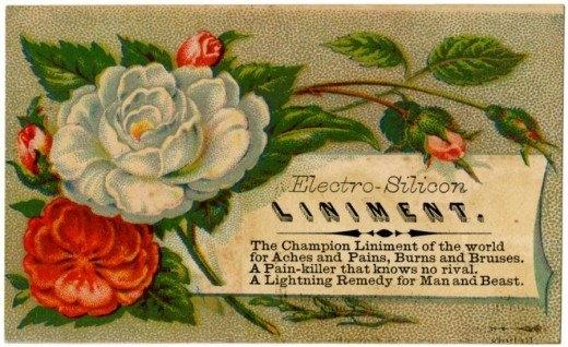 Рекламные открытки на рубеже веков . (Фото 7)