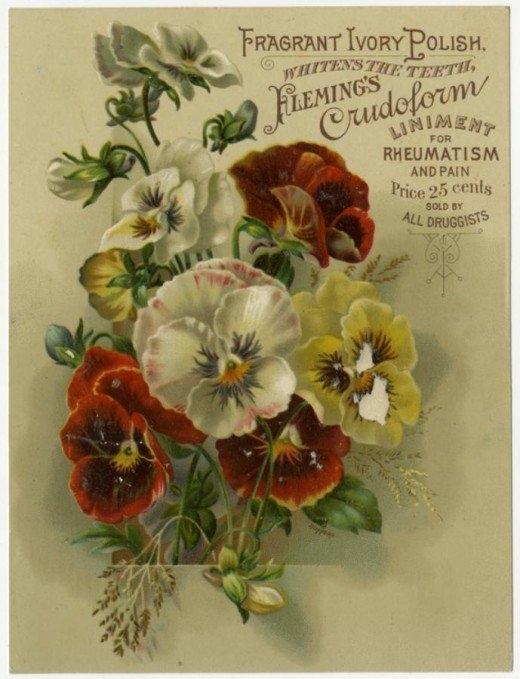 Рекламные открытки на рубеже веков . (Фото 8)