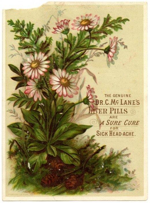 Рекламные открытки на рубеже веков . (Фото 24)