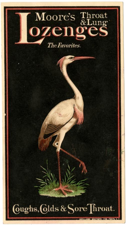 Рекламные открытки на рубеже веков . (Фото 14)