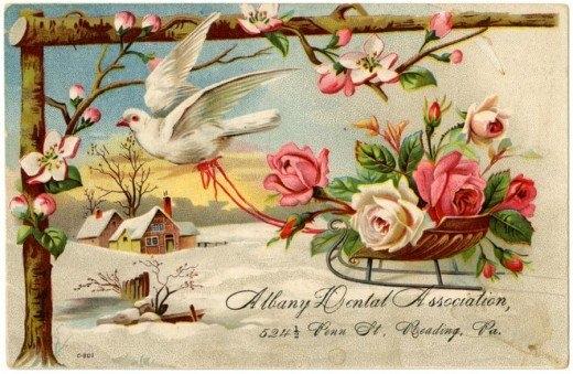 Рекламные открытки на рубеже веков . (Фото 2)