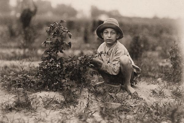Дети - цветы жизни ... (Трафф.) (Фото 32)