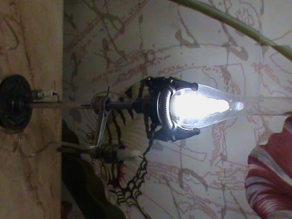 лампа (Фото 3)