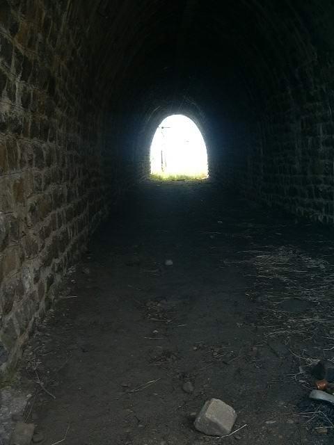 Кругобайкалка - фотоотчёт о несостоявшемся путешествии... (Фото 12)