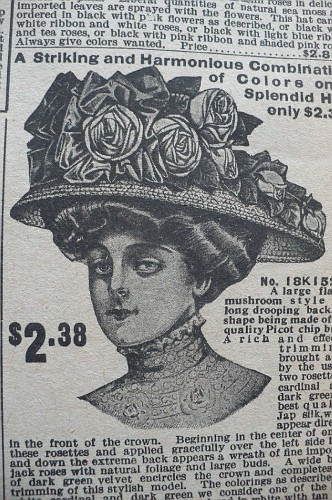 Женские шляпы из каталога sears 1908 (Фото 2)