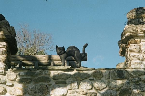 """Уильям Джиллет и его """"кошкин дом"""" (Фото 25)"""