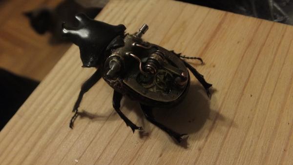 Insectus mechanikus (Фото 7)