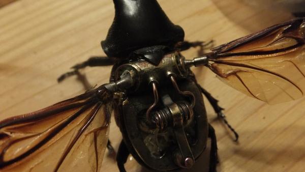 Insectus mechanikus (Фото 9)