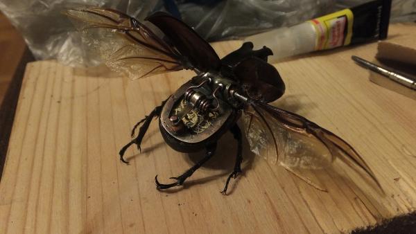 Insectus mechanikus (Фото 10)