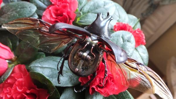 Insectus mechanikus (Фото 13)