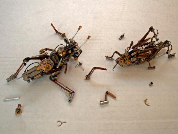 Мои насекомые Steampunk bugs. Они подрались.
