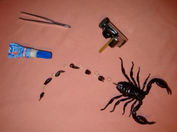 Мои насекомые Steampunk bugs. Скорпион. (Фото 2)