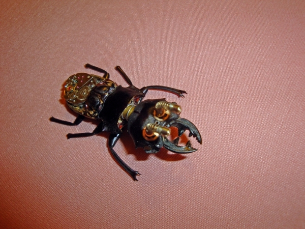 Мои насекомые Steampunk bugs. Жук-Олень. (Фото 4)