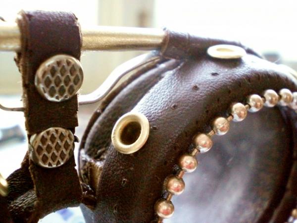 коллекция моих гогглов (Фото 2)