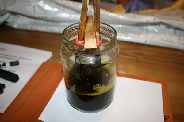 Урок по химическому травлению латуни. (Фото 15)