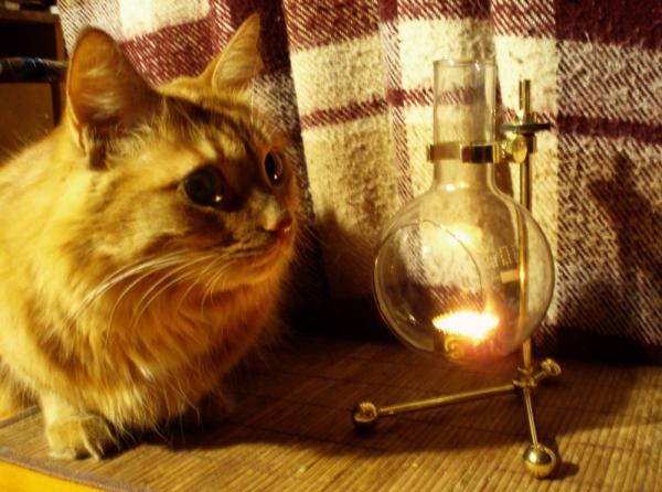 Лампа-подсвечник (Фото 9)