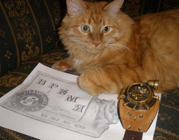 """Часы стимпанк, наручные, скелетон. На конкурс """"Время"""". (Фото 79)"""