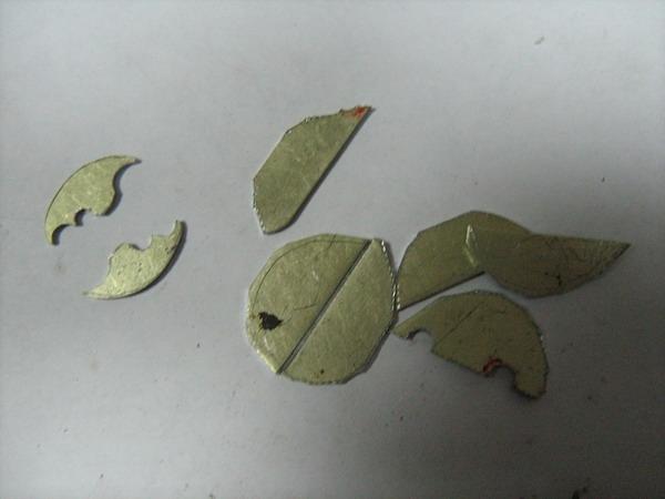 Steamorg Scolopendra (Фото 39)