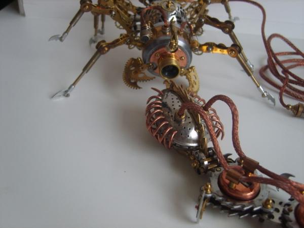 Steamorg Arachnid (веб камера) (Фото 21)