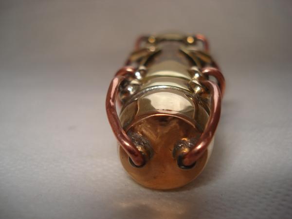 Семейство жуков-паровиков. (траффик) (Фото 48)