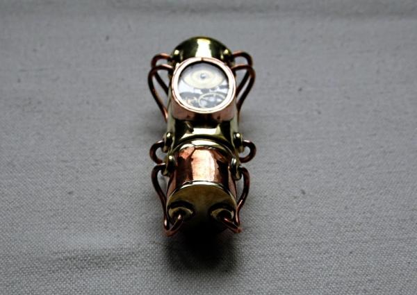 Жук-подводник (Фото 5)