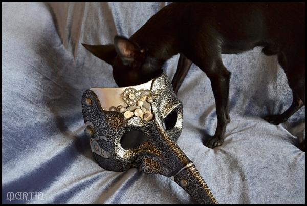 Карнавальные маски (не совсем «стим», но около) (Фото 3)