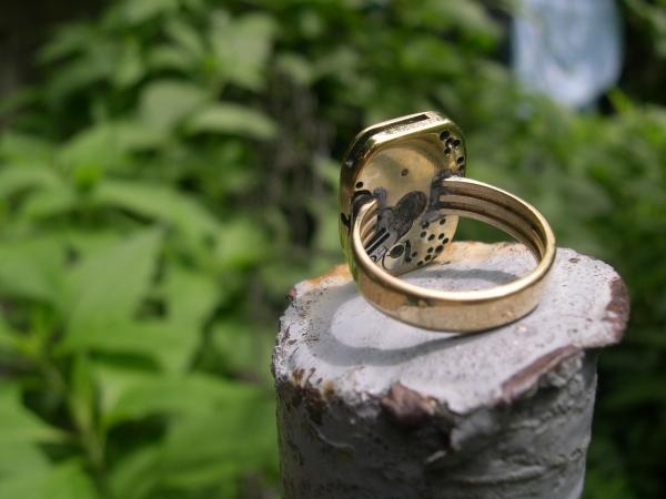 Стим кольцо. Заря. (Фото 3)