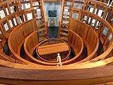 Анатомический театр. (Фото 4)