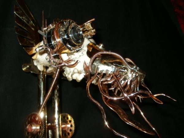 Totenkopf web-cam (Фото 5)