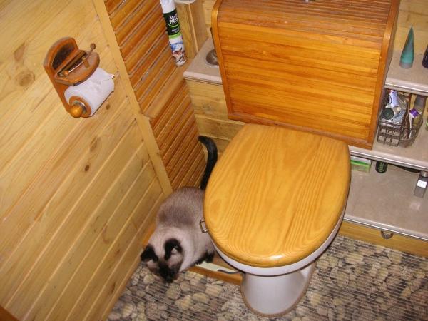 ...просто ванная комната.... (Фото 18)