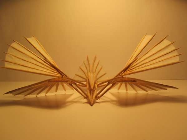 Летучий кораблик фас1