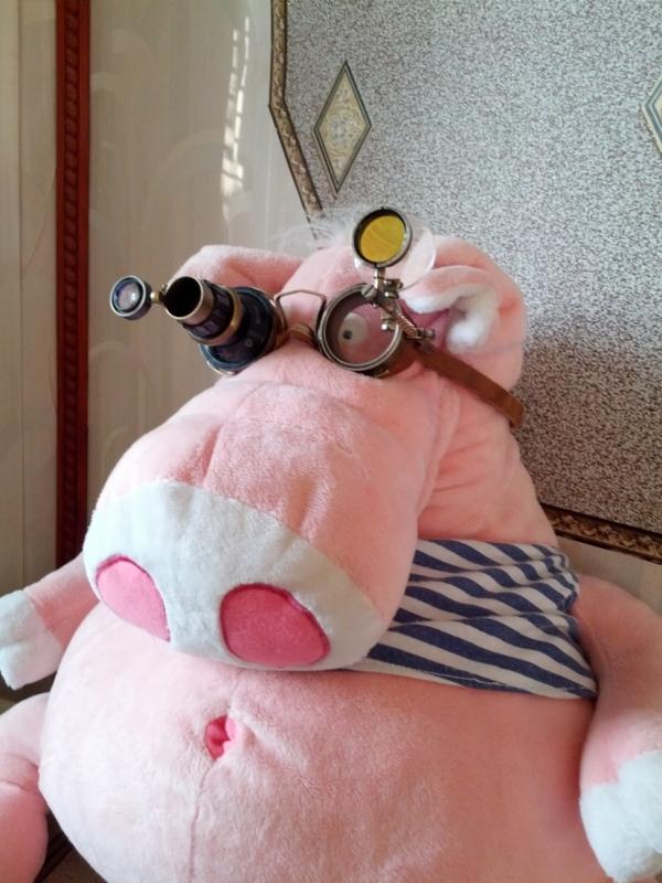 """Гогглы... """"Очки чокнутого лекаря паровых роботов и всяческих изношенных механизмов"""" (Фото 9)"""