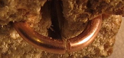 заправленное кольцо