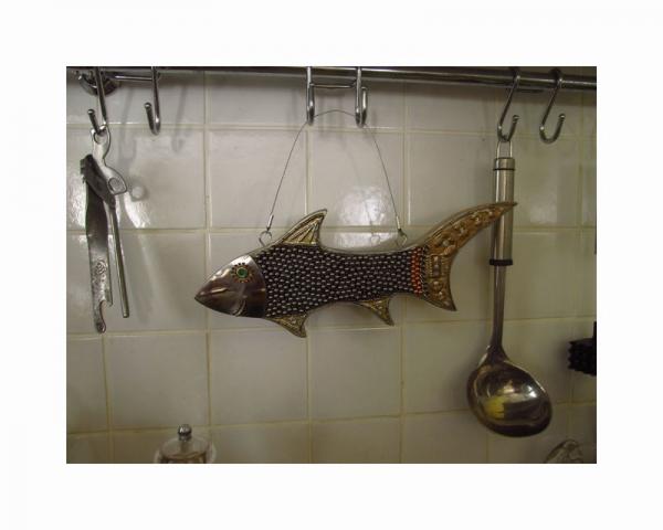 Икровая акула (Фото 3)