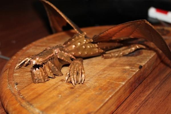 медный крокодил (Фото 4)