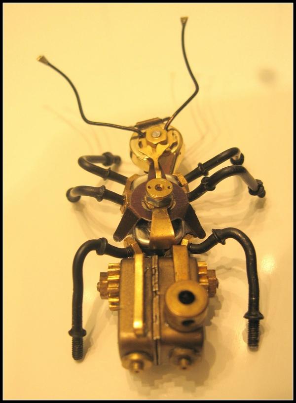Cyber Ant (Фото 17)