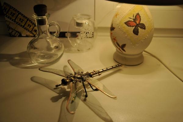 Анкерная стрекоза (Фото 2)