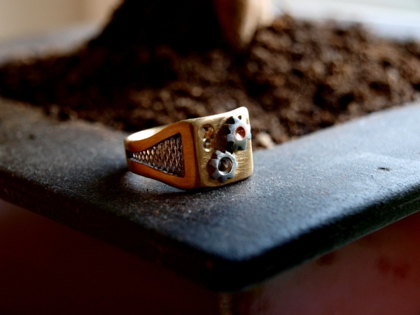Перстень в подарок другу.