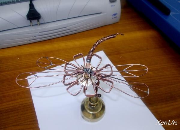 Odonata (Первая работа)