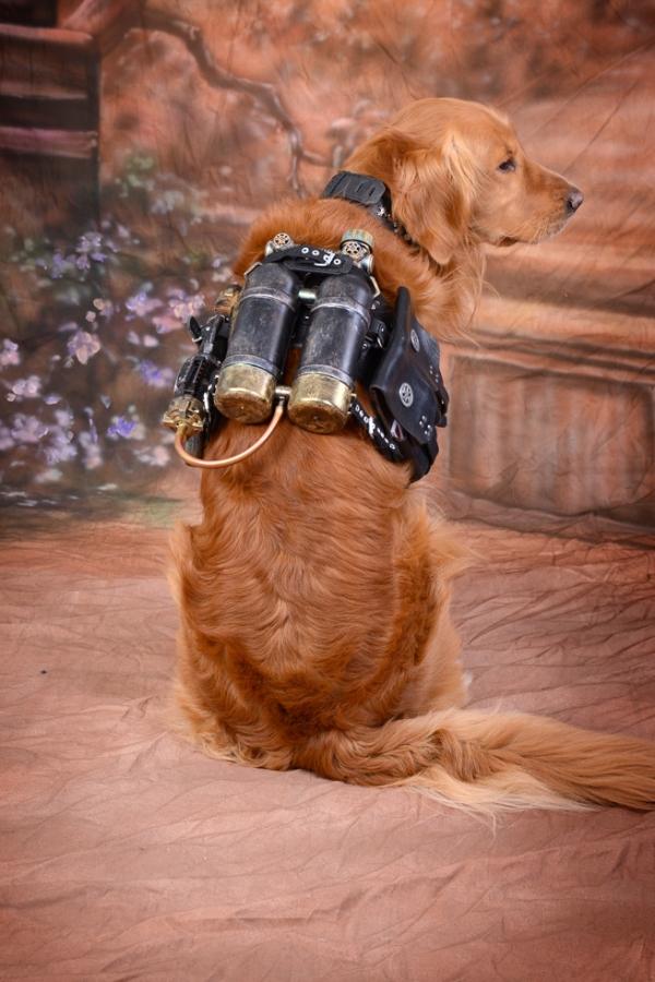 Steampunker Dog
